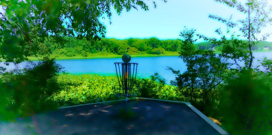 Disc Golf Basket Cold Brook