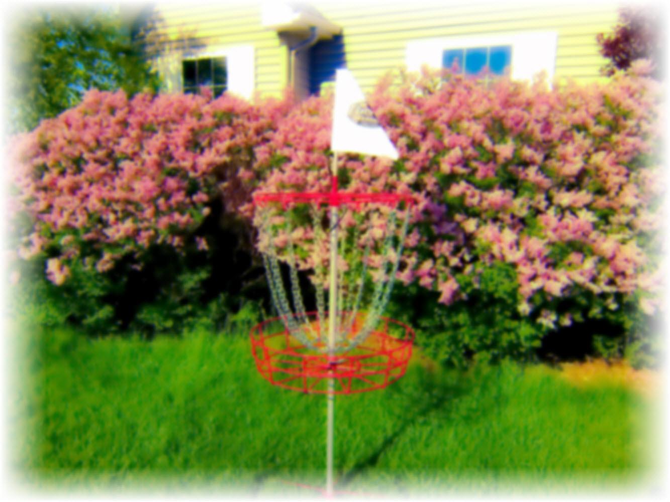 Disc Golf Puttheads Summer Update